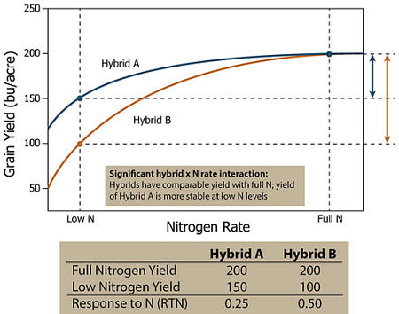 Response of two hypothetical corn hybrids showing a significant hybrid x N rate interaction