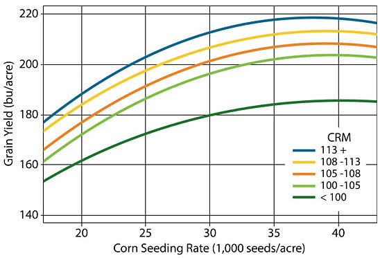 Chart showing yield response to plant population for corn hybrids from five maturity ranges.