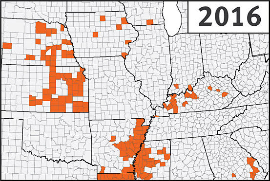 This is a map of the U.S. Corn Belt showing confirmed detections of southern rust in corn through the first week of September during the 2016 growing season.