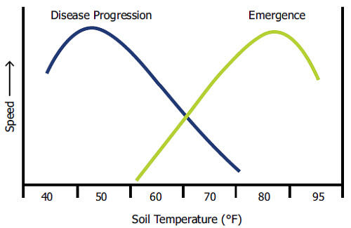Theoretical responses of disease progression and corn seedling emergence to soil temperature.