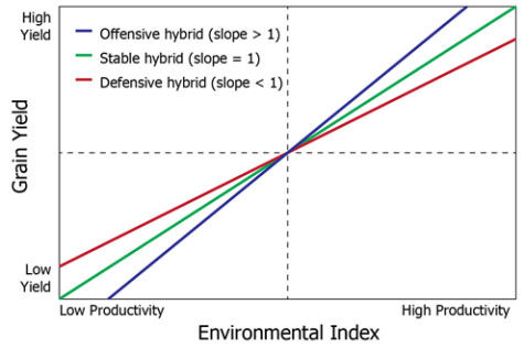Corn hybrid yield stability model showing example linear regressions for offensive, stable, and defensive hybrids.