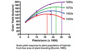 Plant yield response to plant population of hybrids from four eras of plant breeding