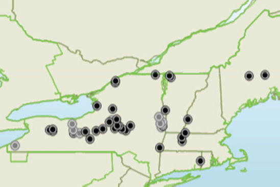 Map: Corn silage Product Knowledge Plot (PKP) locations in New York and New England