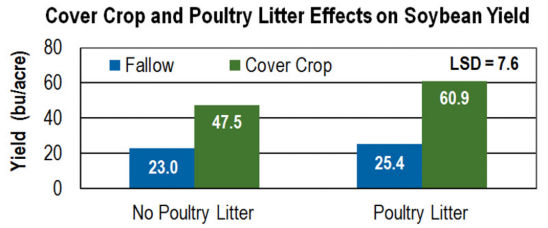 Cover Crops and Poultry Litter Effects on Soybean Yield.