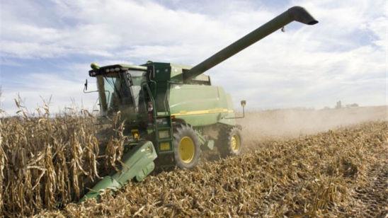 drought_stress_grain_harvest_2