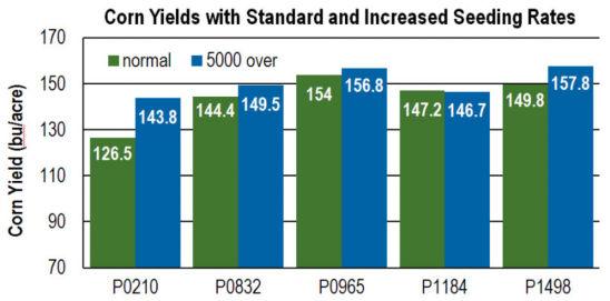 corn yields chart