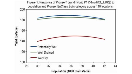 Chart: Response of Pioneer® brand hybrid P115HR (RX1,LL,RR2)
