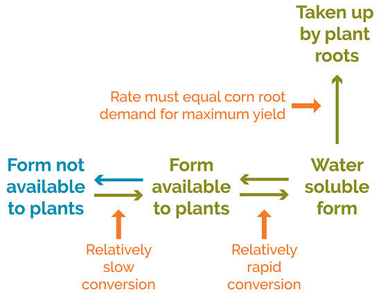 This is a chart showing different forms of plant nutrients in soil.