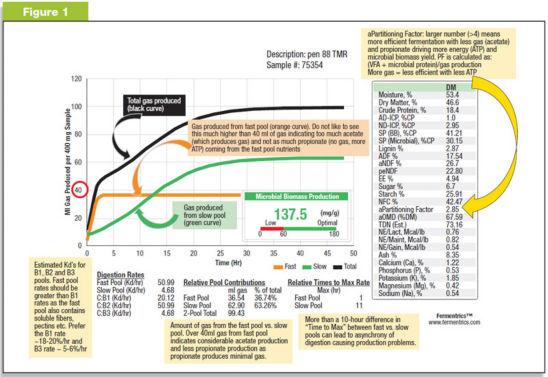 Gas Fermentation Analysis Report