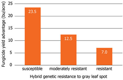 Average yield increase of hybrids susceptible, moderately resistant, and resistant to gray leaf spot due to foliar fungicide application.