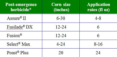 Commonly used post-emergence herbicides for control of glyphosate-tolerant volunteer corn in soybeans.