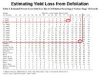 Estimating Yield Loss from Defoliation