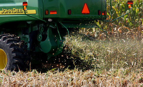 Photo: Individual kernels may be lost from either the corn head or out the back of the combine.