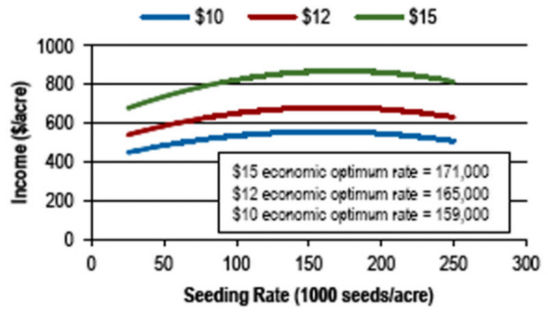 optimum economic seeding rates at soybean market prices