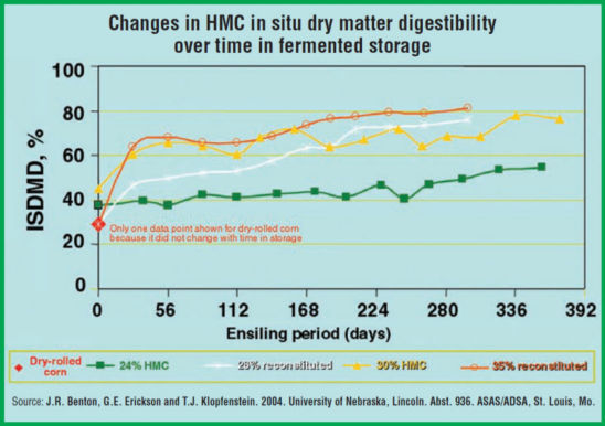 Chart: Changes in HMC in situ dry matter digestibility over time in fermented storage