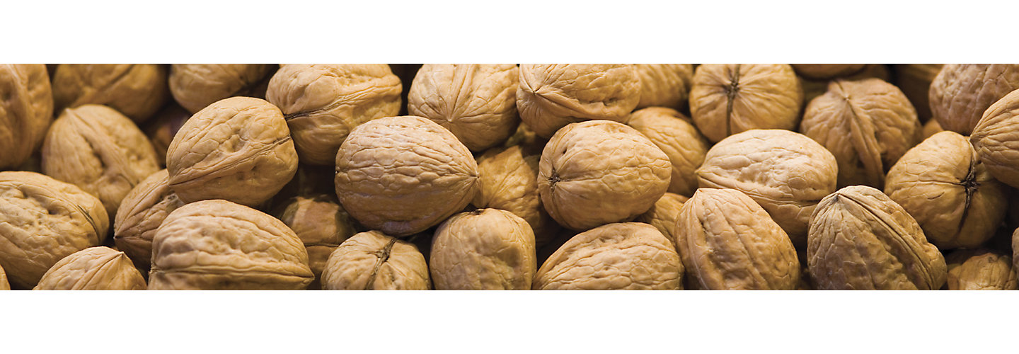 Walnuts Beauty