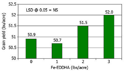 Effect of Fe-EDDHA on soybean grain yield.