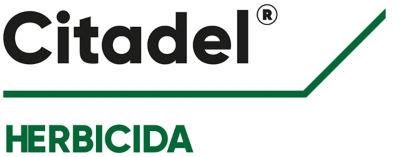 Logotipo Citadel