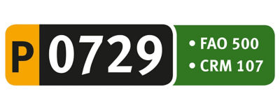 Logotipo P0729