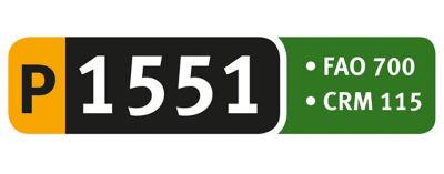 Logotipo P1551