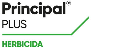 Logotipo Principal Plus