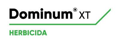 logo-dominumXT-v2