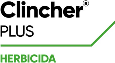 Clincher Plus