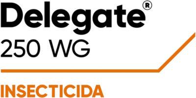 Delegate- 250WG
