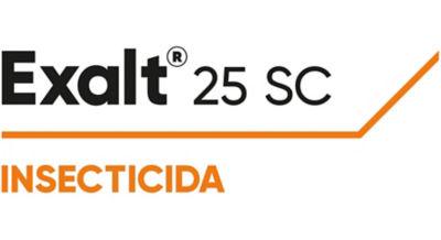 Logotipo Exalt 25 SC
