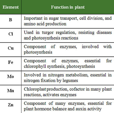 Functions of micronutrients in plants