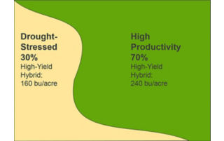 yield results.
