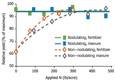 Relative yield of nodulating and non-nodulating soybean with varying rates of fertilizer or manure applied.