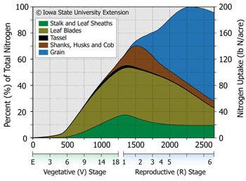 Seasonal N uptake (lbs N/acre) separated into leaf, stalk, tassel, husk+cob, and grain material for a typical corn crop.