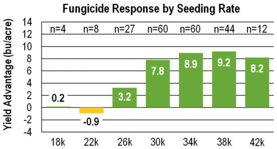 Chart: Fungicide Response by Seeding Rate