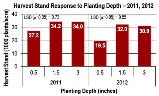 Chart - corn harvest stand response to planting depth, 2011, 2012
