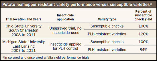 Potato leafhopper resistant variety performance versus susceptible varieties