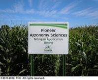 Pioneer Agronomy Sciences - Nitrogen Application Timing test plot