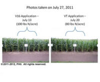 V16 and VT nitrogen applications