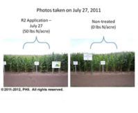 R2 application plot and non-treated plot