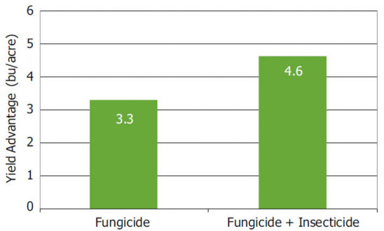 Small-plot yield advantages with fungicide and fungicide + insecticide applications averaged over a 5-year period.