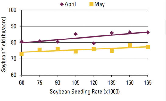 Chart - Seeding rate effect on soybean yield by planting date.