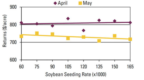 Chart - Seeding rate effect on gross returns above seed cost by planting date.