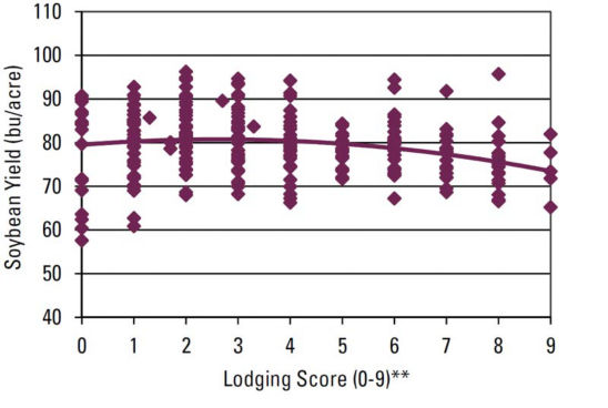 Chart - Lodging effect on soybean yield.