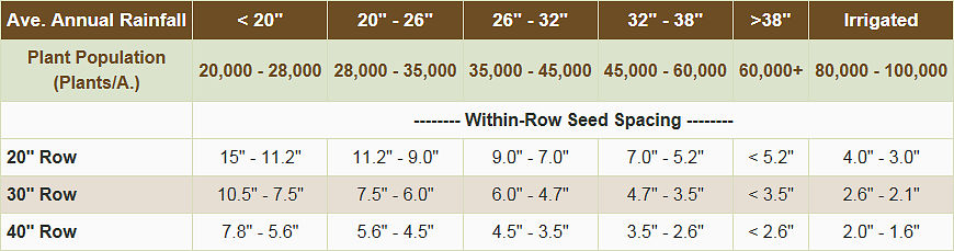 Plant population and seed spacing guidelines for grain sorghum.