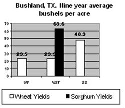 Comparison wheat/sorghum yields - TX