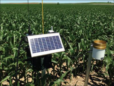 TDR probe (with rain gauge) installed in corn field.
