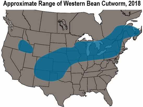 Map: Approximate Range of Western Bean Cutworm in the U.S., 2018.