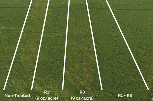 Photo of DuPont™ Aproach® on-farm fungicide research trial near Orchard, NE, 2017.