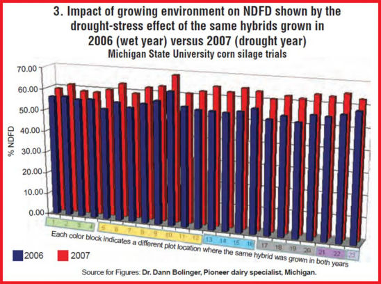 Chart: Data from Michigan State University silage plots harvested in a relatively wet growing season (2006) compared to the same hybrids harvested from the same plot in a relatively dry growing season (2007).