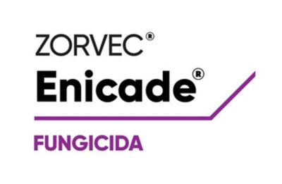 Logo de Zorvec Encantia